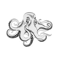 Брошь Octopus Silver